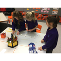 We shared our ideas and worked as a team.