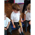 We were very gentle and showed the animals how we can be caring.
