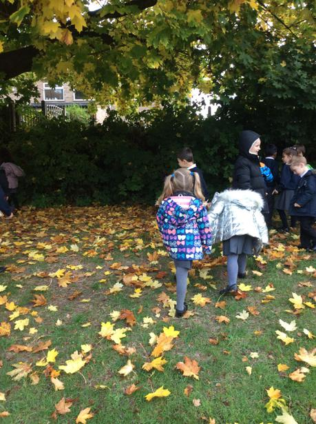 We found different coloured leaves and conkers