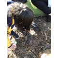Digging for treasure and mini beasts