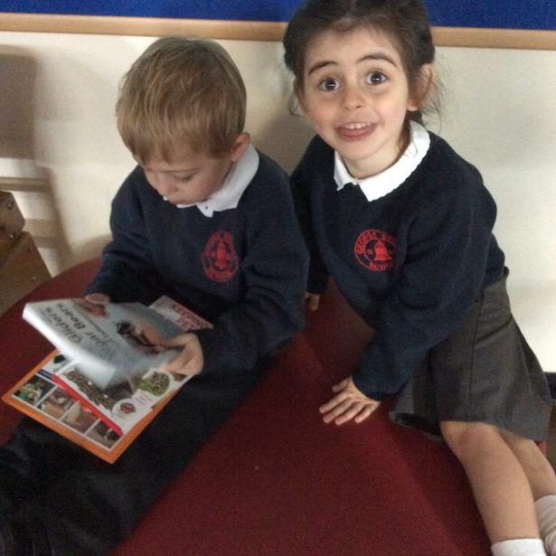 We looked at information books about the animals.