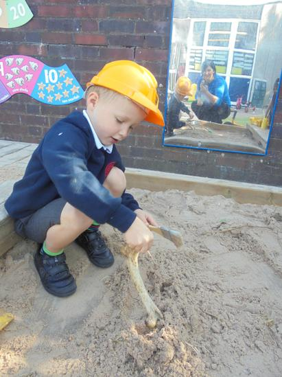 Whilst excavating, Archie discovered a dinosaur bone.