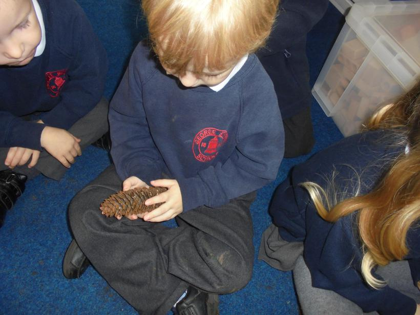 We felt the pine cones that we found outside