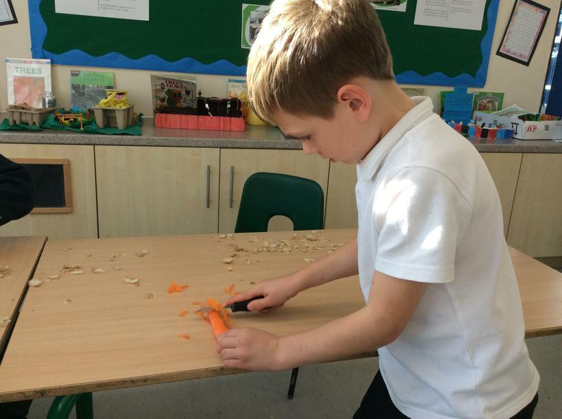 Louie peeling a carrot.