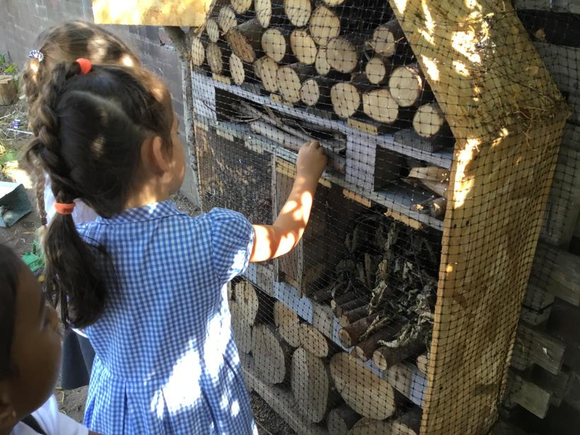Being kind and caring to the minibeasts staying in our bug hotel