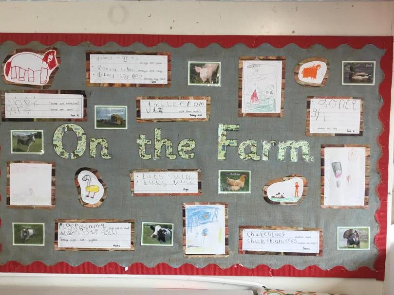 Our class farm display with our farm animal artwork and facts that we have written