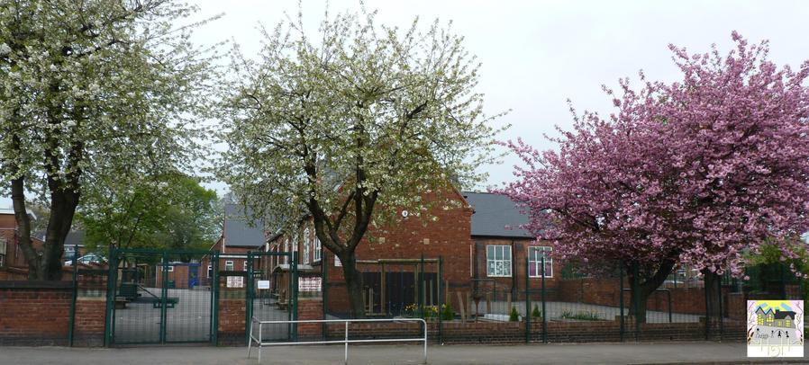 Gilbert's in Blossom