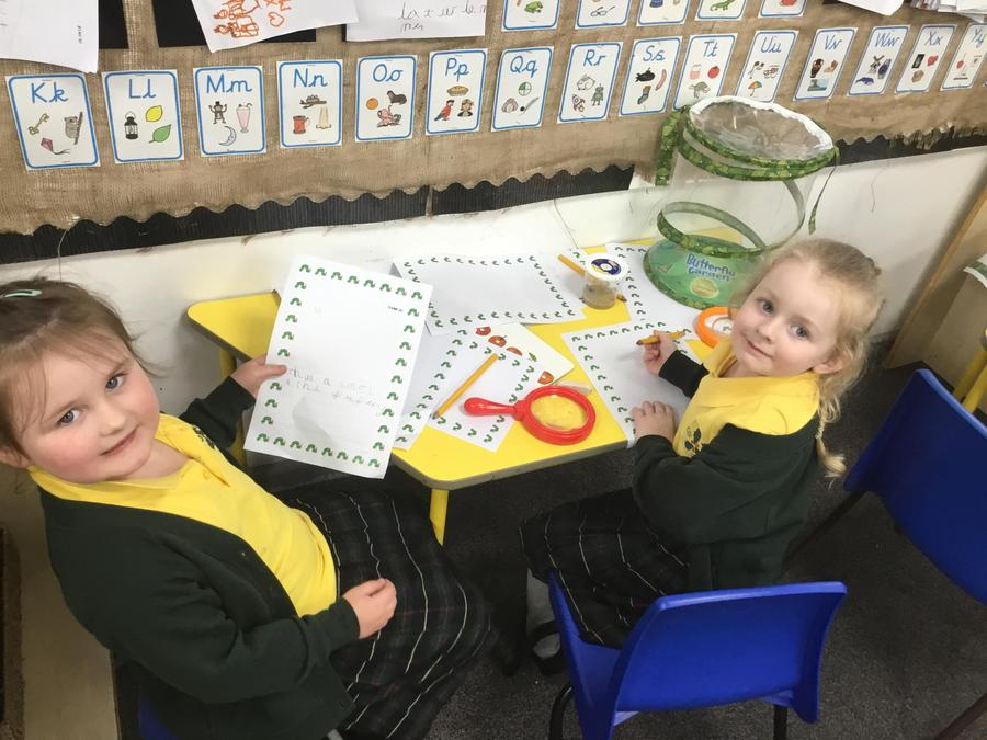 Independent writing about our caterpillars