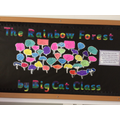 Y1 Big Cats 'The Rainbow Forest.'