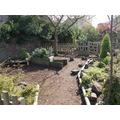 Our Mini-Beast Garden