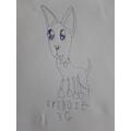 Freddie Proctor - Year 3
