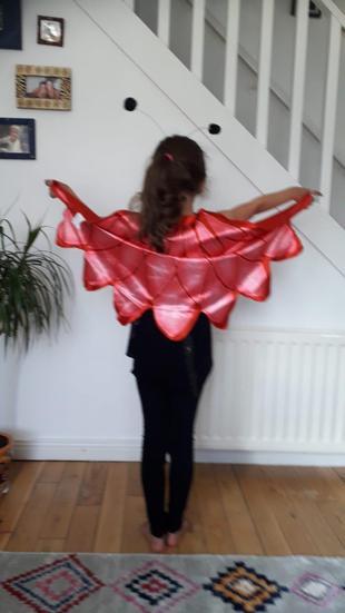 Zara the butterfly.