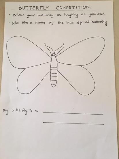 Deisgn a butterfly and send it for our competition