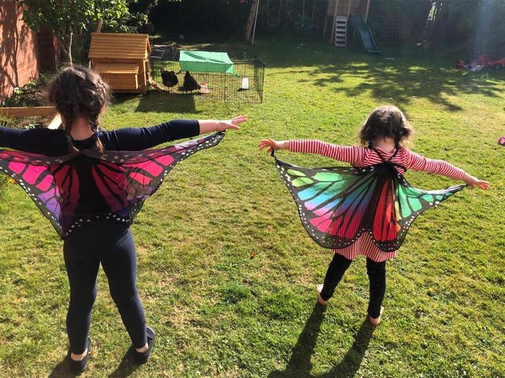 Isabella the butterfly.