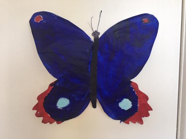 Alba's butterfly.