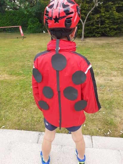 Luca the ladybird.
