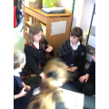 Music in Reception