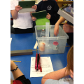 Potions in Class 3