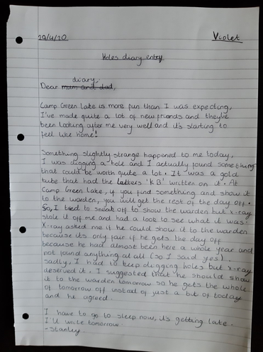 Violet's diary entry from Stanley- well done!