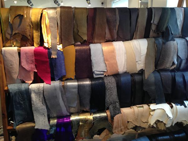 The myriad of colours of fish skin
