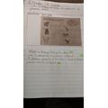 Wren: Timi - fantastic scientific knowledge and presentation!