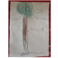 Birch:Liam V labelling tree based on story 'Stuck'