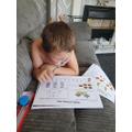 Rose:  Logan B - working hard on his maths