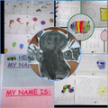 Daffodil:  Finley H - What fabulous learning!