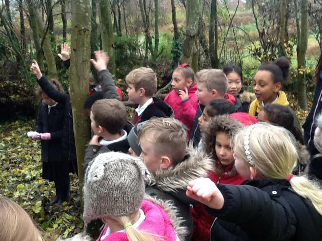 Bennion Pools Bulb Planting