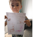 Lucas drawing what is heavier and lighter.
