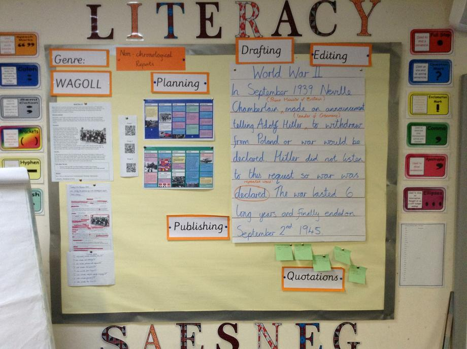 Literacy Non chronological report 6G