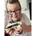 Josh's delicious minibeast sandwich