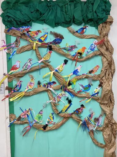 Animals Topic - Birds of Paradise