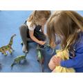 Dinosaur Measuring