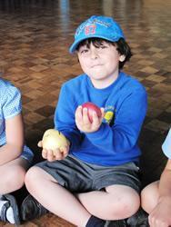 Sampling the first crop of potatoes!