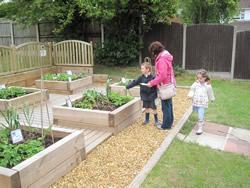 .... and see what crops the children are growing this year!