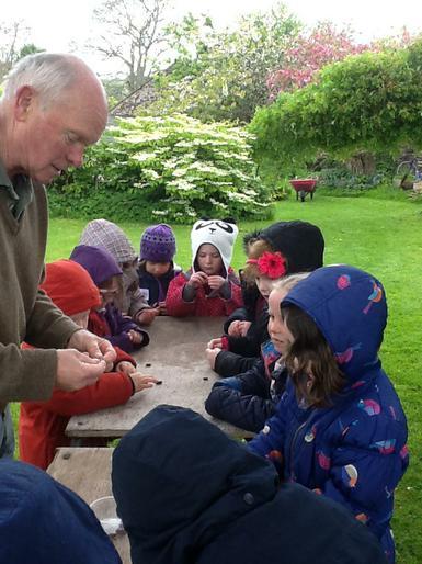 Investigating seeds