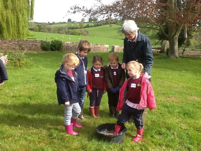 Dipping our feet to get rid of any bugs.