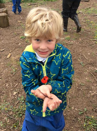 Engage and Excite Day at Forest School 1