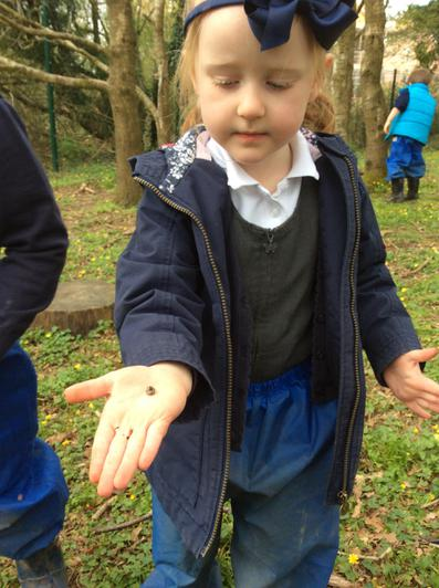 Engage and Excite Day at Forest School 10