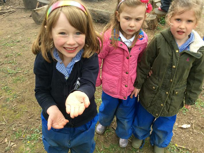 Engage and Excite Day at Forest School 21