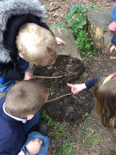 Engage and Excite Day at Forest School 3