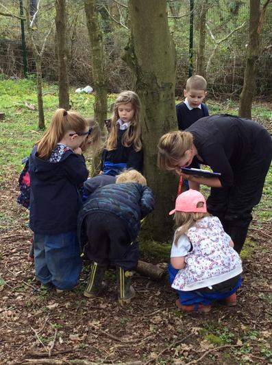 Engage and Excite Day at Forest School 8