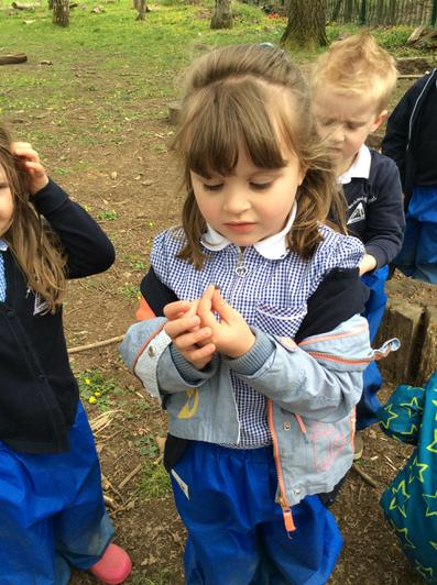 Engage and Excite Day at Forest School 2