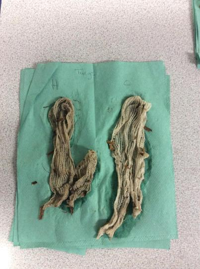Using twigs to test effectiveness of hot water.