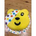 Mrs Curd's wonderful Pudsey cake!
