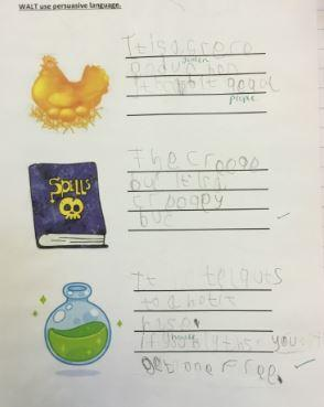 We have used persuasive language to encourage the witch to buy our products