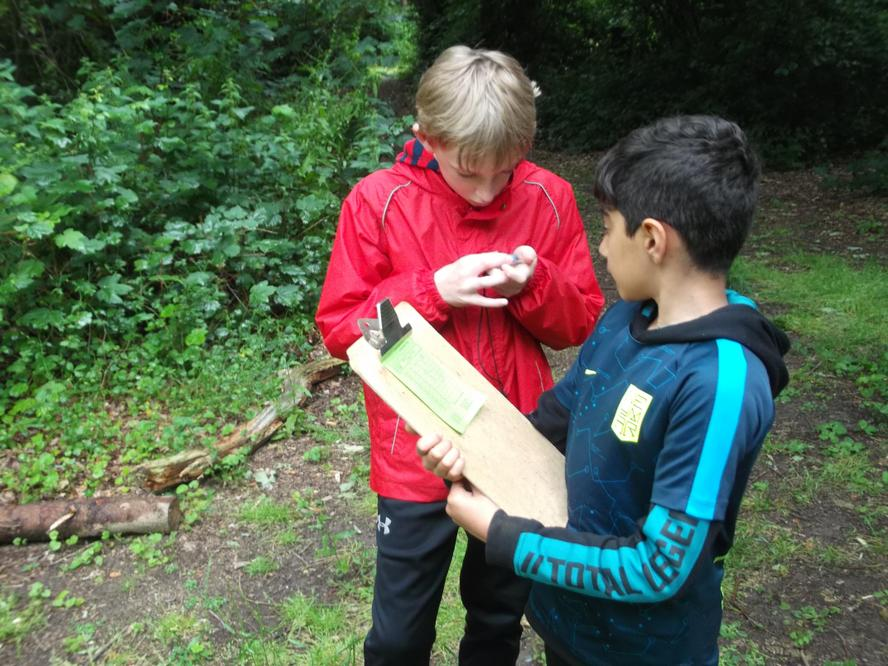 Orienteering competition.