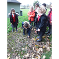 We each laid a stone to make a huge poppy outside
