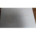 Jemima's spider-diagram